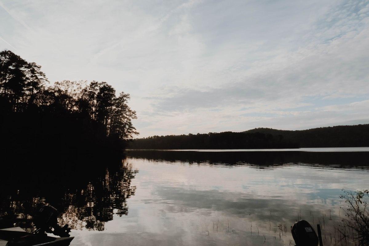 Fall Vibes: A NovemberPlaylist